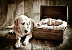 Assim Lilica nossa cachorrinha fazia com Francisco; a cada gemidinho dele er um latido dela... Somos mães