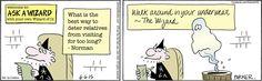 Niiiice.... lol (Wizard of Id, 6-6-15)