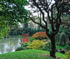 Brooklyn Botanic Garden has some beautiful and scenic landscapes. They pride themselves on the Cherry Blossom event in April. I had drawing class here while attending Pratt. Make a day out of it by starting at the Brooklyn Museum of Art and then checking out the gardens. http://www.bbg.org/