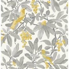 Royal Garden Yellow Wallpaper from Cole & Son Historic Royal Palaces Collection. A large scale wallpaper featuring colourful golden yellow birds in a grey cherry tree on a cream background. Cole And Son Wallpaper, Wallpaper Roll, Royal Wallpaper, Purple Wallpaper, Wall Wallpaper, Grey Yellow, Green And Purple, Yellow Birds, Golden Yellow