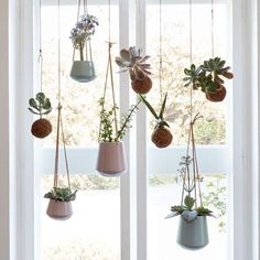 <p>Hung in the kitchen or given pride of place in the bedroom window, these pretty pink or blue ceramic pots are just the thing to add a healthy dose of green to your home.</p> <p>Leave in a light place, except of course plants that must avoid too much direct sunlight.</p>