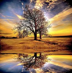 Most Amazing Sun Sets | 20 Most Amazing Examples of Reflective Photography