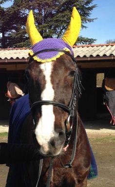 Base colore n. 115, bordo n. 52, strass, orecchie realizzate in stoffa americana con bolle tono su tono. In foto la nostra Jade (KWPN) #flyveil #flybonnet #horse #pony #cuffiettecavallo #cavallo #equestrian #equestrianstyle #equinestyle #horsewear #earbonnet #earnet #horsefashion #horselover #jumper #strass
