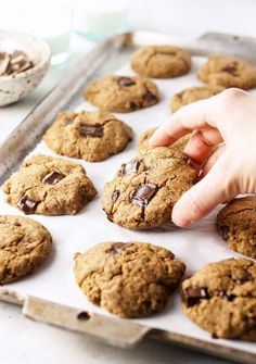 The best vegan buckwheat chocolate chip cookies! They are nut-free gluten-free grain-free dairy-free naturally sweetened and easy to make. Cookies Sans Gluten, Dessert Sans Gluten, Gluten Free Desserts, Vegan Desserts, Vegan Dishes, Baking Recipes, Cookie Recipes, Dessert Recipes, Flour Recipes