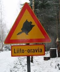 Finnish flying squirrel warning sign, not because they are dangerous, but because they are protected.