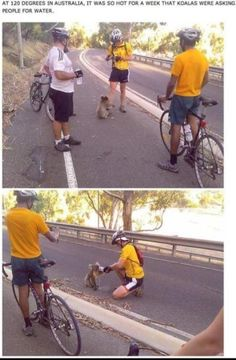 Faith in humanity. Restored.