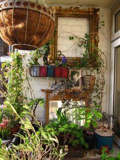 Turn Your Patio Or Balcony Into A Vegetable Garden