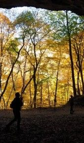 Starved Rock State Park - Voted the #1 attraction in the state of Illinois!Starved Rock State Park