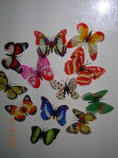 Lot of 12  3D Butterfly Fridge Magnets - All 12 Different Colors