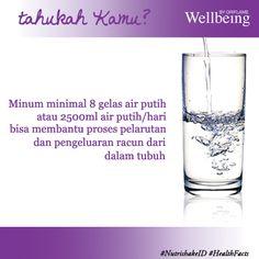 Rahasia minum air putih