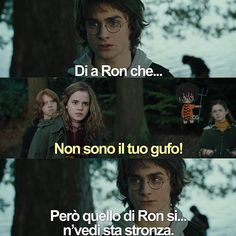 Verissimo ogni volta che lo vedo lo penso 😂😂 Harry Potter Tumblr, Harry Potter Anime, Harry Potter Love, Harry Potter Memes, Italian Memes, Dramione, Drarry, Draco Malfoy, Hermione Granger