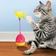 Cat Tumbler Toys - Set of 2 - 39336