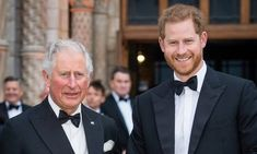 Prince Harry Et Meghan, Prince Charles And Camilla, Prince Andrew, Prince Philip, Prince Of Wales, Harry And Meghan, Prince William, Old Prince, Young Prince