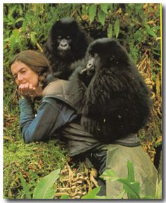 """Dian Fossey was brutally hacked to death during the night of 26-27 December 1985 in her mountain cabin at Karisoke, Rwanda. Without Dian, there would probably be no mountain gorillas left to protect.   In April 1986 a special issue of IPPL News was issued. It contained a touching tribute by Colin Groves, """"She Loved Gorillas and Mountains,"""" and the fun """"Boot Story,"""""""