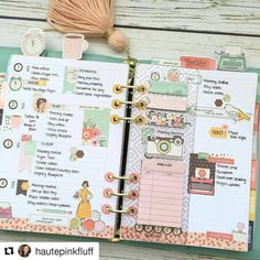 Love this Reset Girl Carpe Diem planner setup from Vanessa of @hautepinkfluff. Using a Robin's Egg Blue planner and the TRG…