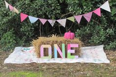 set for a little country girl's 1st birthday in the fall