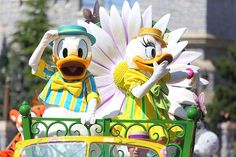 A very proud Donald has dressed to impress! Doesn't he look amazing in his Springtime best?! Disneyland Paris DLP Daisy Duck Swing into Spring