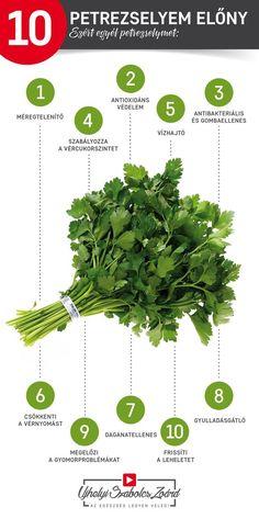 ❤️A petrezselyem tartalmaz A-, B- C-, E- és K-vitaminokat, flavonoidokat, klorofillt, vasat, káliumot és illóolajokat is. Kitűnő VÍZHAJTÓ, felpörgeti az anyagcserét, a FOGYÓKÚRÁK sikeréhez is hozzájárul. Csökkenti a puffadást, a hányingert, támogatja a BÉLFLÓRA egészségét, védi a SZÍV- és ÉRRENDSZERT is, csökkenti a magas vérnyomást, fokozza a vérkeringést, fellép az érelmeszesedés ellen. Fogyaszd te is rendszeresen a petrezselymet ételekhez vagy gyümölcsturmixokba! Az egészség legyen veled! Side Fat Workout, Jaba, Workout Videos, Home Remedies, Herbalism, Healthy Lifestyle, Health Care, Health Fitness, Herbs