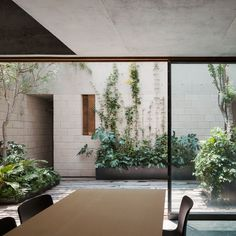 Architecture studio Ambrosi Etchegaray has slotted four new homes behind a historic facade in Mexico City, but left enough space for three secluded patios Design Cour, Futuristisches Design, House Design, Outdoor Walls, Indoor Outdoor, Outdoor Living, Outdoor Patios, Outdoor Rooms, Indoor Trees