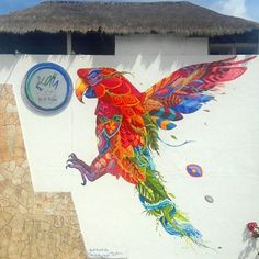 """FENIX"" THE RED PARROT This is how I participate for #caribecolors with my dear friend from Bogota, Datura Cebil  #faridrueda #playadelcarmen #playadelcarmenstreetart #parrot"