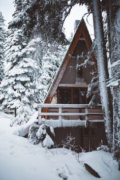 Cozy home by Nick Carnera (Washington state)