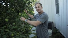 The Donat's Garden. Lucas Donat the CEO of dw+h takes us on a tour of his backyard garden.