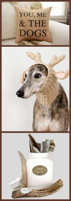 Dog Love!  These wonderful items can be found here:  Burlap Pillow:  https://www.etsy.com/listing/194473660/you-me-the-dogs-burlap-pillow  Greyhound Photograph: https://www.etsy.com/listing/174223583/greyhound-photograph-dog-photograph  Antler Dog Chews:  https://www.etsy.com/listing/67005208/antler-dog-chew-x-large-whole-sized-for