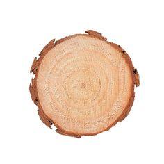 Unfinished+Wood+Slices+Large+-+m.orientaltrading.com