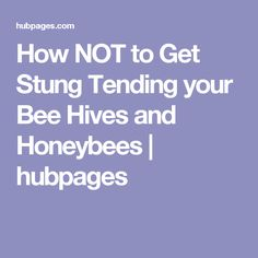 How NOT to Get Stung Tending your Bee Hives and Honeybees | hubpages