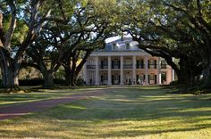 Beautiful Oak Alley Plantation in Lousiana, remembered me the house of the movie character Forrest Gump.