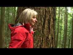 Mother Trees~Learn about the sophisticated, underground, fungal network trees use to communicate and even share nutrients. UBC professor Suzanne Simard leads us through the forrest to investigate this underground community.