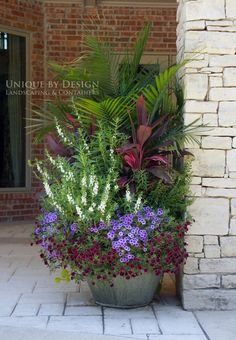 Gorgeous garden container - great combinations of colours, textures, and heights by Unique by Design l Helen Weis