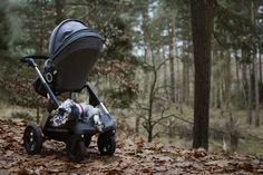 take to the trail with your family this year! All Terrain Stokke Trailz Stroller. via Pretty Pleasure Blog