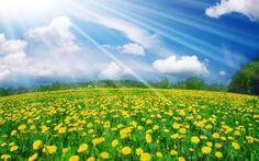 Los 144.000 – Las Semillas de la Nueva Tierra – Serán Seres Humanos http://www.yoespiritual.com/mensajes-de-maestros/los-144-000-las-semillas-de-la-nueva-tierra-seran-seres-humanos.html