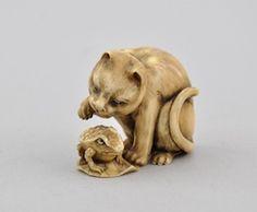 Cat & toad