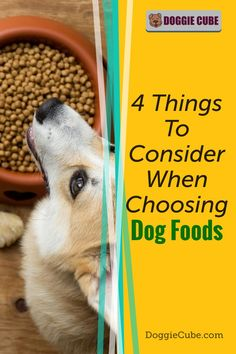There are several factors to consider when choosing the right food for your dog. Different dogs have different nutritional needs at different stages in their lives. Here are some things to consider when selecting the food you'll give your dog. Dog Nutrition, Dog Diet, Guide Dog, Medical Problems, Dog Care Tips, Homemade Dog Food, Nutritious Meals, Dog Grooming, No Cook Meals