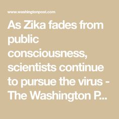 As Zika fades from public consciousness, scientists continue to pursue the virus - The Washington Post Zika Virus, The Washington Post, Scientists, Law Of Attraction, Consciousness, The Cure, Health Care, Public, Science