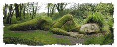 The Lost Garden of Heligan, Cornualles, England! Garden Art, Garden Design, Tree Garden, Garden Whimsy, Garden Junk, Wooden Garden, Terrace Garden, Glass Garden, Places To Travel