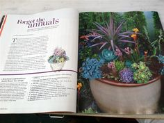 Phoenix Perennials - E-Newsletter
