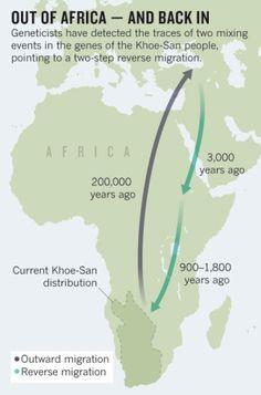 African genes tracke