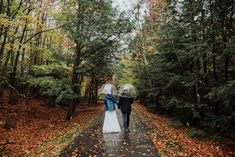 Couple explores the forest in Franconia Notch State Park in New Hampshire after their elopement ceremony. New Hampshire elopement packages. Franconia Notch, Echo Lake, Misty Forest, Elopement Ideas, Snowy Mountains, Outdoor Weddings, Beautiful Morning, Elopements, Best Day Ever