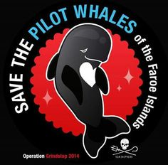 July 1, 2014: Please invite your friends! We need all hands on deck!  Time To End The Grind!  Event~ https://www.facebook.com/events/1909048822569517/?notif_t=plan_user_joined #SeaShepherd #defendconserveprotect #grindstop2014 #stopthegrind @OpGrindStop