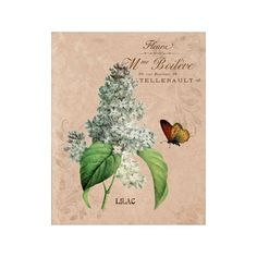 Flower Garden IV Lilac - Flower Artwork - Floral Art Print - 8x10 Print - French Country Style - Cottage Chic Style Decor