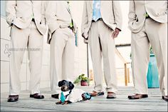 Dachshund with khaki suit with aqua tie to match the groom! | Gabrielle Fox Photography #wedding #pets