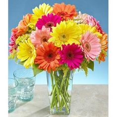 My fave flowers! who can't help but be happy when surround by these bright Gebera Daisies!