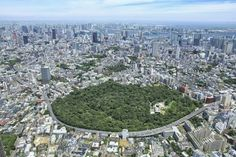 Explore The Fascinating Institute For Nature Study In Tokyo!