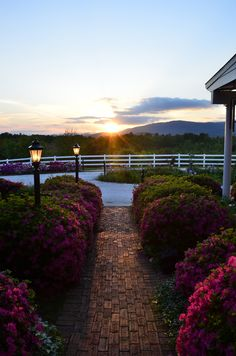 A beautiful sunset at The Red Horse Inn. Imagine sipping wine while sharing a moment with your loved one. Could anything be better?  www.theredhorseinn.com