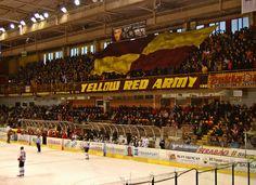 Zimný štadión Pavla Demitru in Trenčín, Trenčiansky kraj Pavlova, Four Square, Hockey, Basketball Court, Sports, Hs Sports, Field Hockey, Sport, Ice Hockey