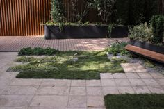 Gradina urbana peisagist Alexandru Gheorghe gradina moderna arhitect peisagist f& Backyard, Patio, Jacuzzi, Landscape Design, Sidewalk, World, Exterior, Outdoor Decor, Modern