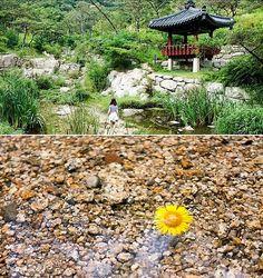 【景福宮】西村:水聲洞溪谷、林美術館、西村小店們